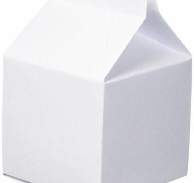 Milk Cartons, 24 Piece